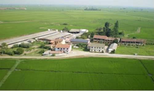 azienda agricola in campagna
