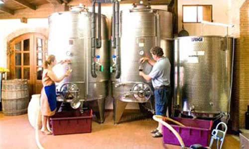 silos vino