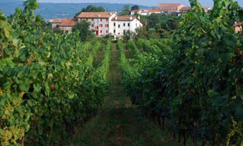 view of Belecasel winery